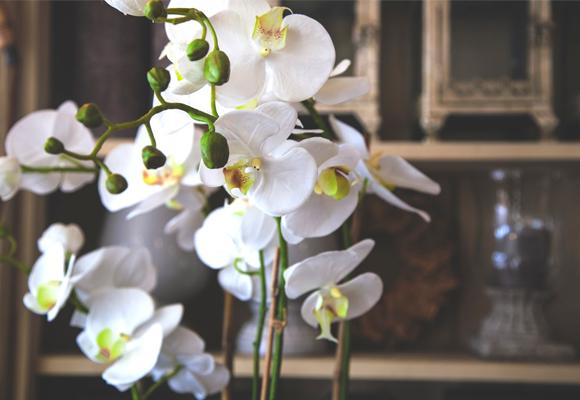 Flower&Glory-ArtificialFlowers